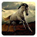Horse Sounds icon