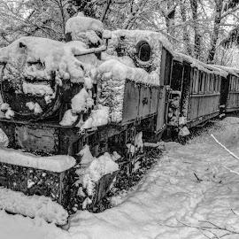by Željko Salai - Transportation Trains