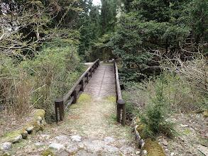 オオルリ橋を渡り林道へ