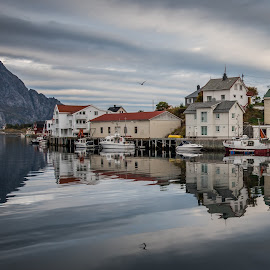 Henningsvær, Lofoten by Terje Jorgensen - City,  Street & Park  Neighborhoods