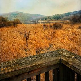 😊 by Baks Berbl - Landscapes Prairies, Meadows & Fields