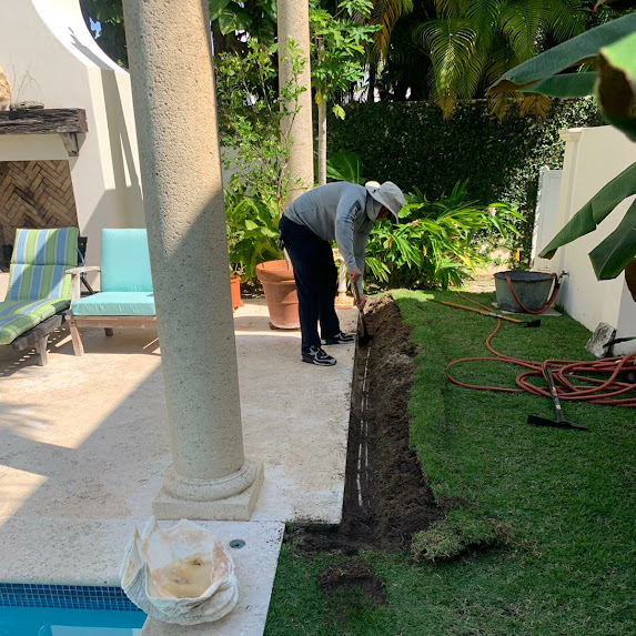 Subterranean Termites West Palm Beach