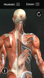 Muscle Trigger Point Anatomy v2.4.5 (Paid) [Latest] | APK4Free
