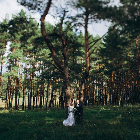 Wedding photographer Dmitriy Klenkov (Klenkov). Photo of 21.11.2017
