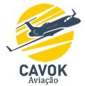 AIS CAVOK icon
