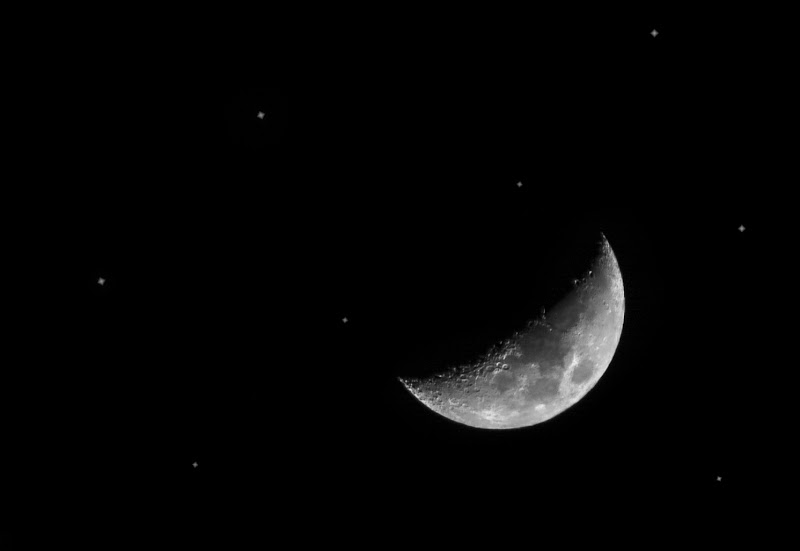 Luna  di Angelo Toscano