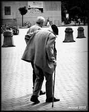 Photo: Wenn wir Unterstützung benötigen ...           It's good to have someone on his side ...