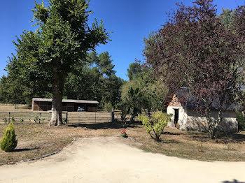 maison à Saint-Nicolas-de-Bourgueil (37)