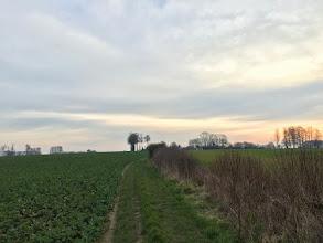 Photo: Trouville, le Cheval-Blanc