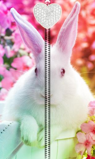 Cute Bunny Zipper UnLock