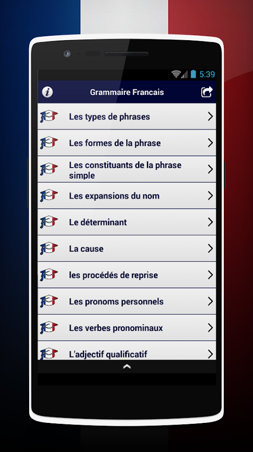 French Grammar- screenshot