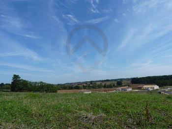 terrain à Montaut (40)