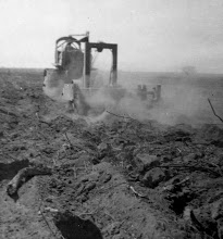 Photo: Digging out roots
