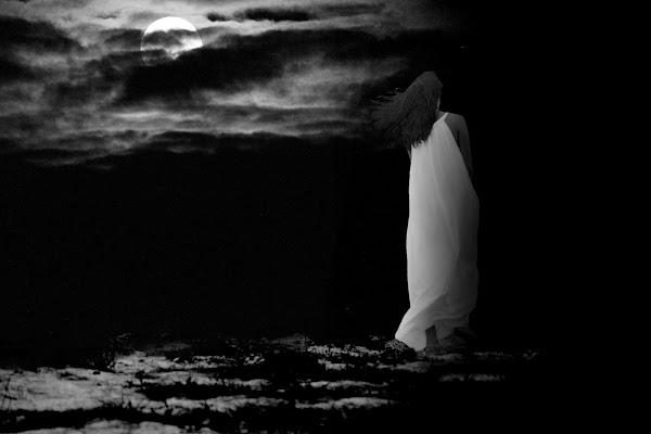 La signora della notte di Naldina Fornasari