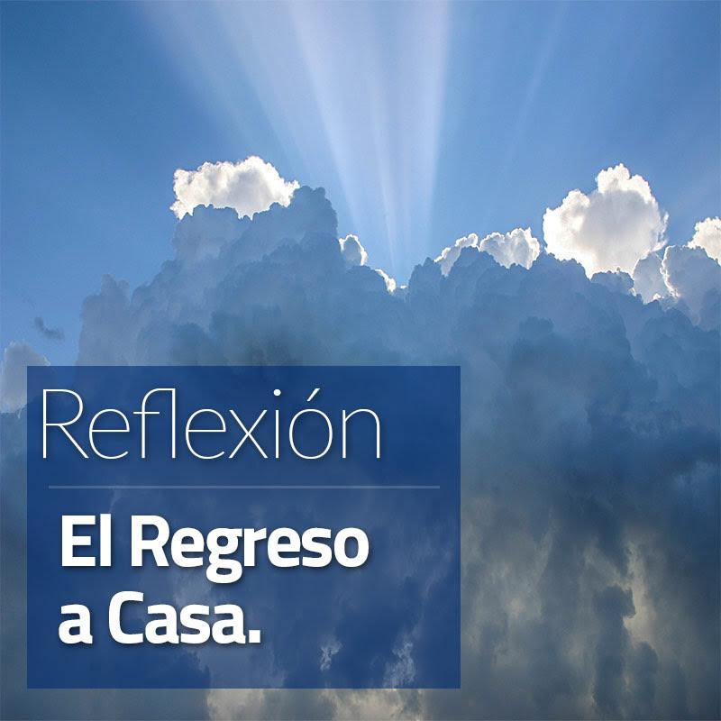 Reflexión El Regreso a Casa