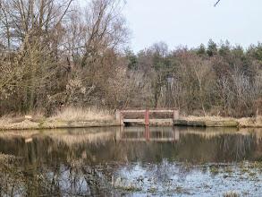 Photo: 8,4 km MEW Sokołów miejsce przenoszenia kajaków