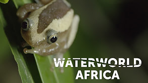 Waterworld Africa thumbnail