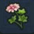 しんぴの花