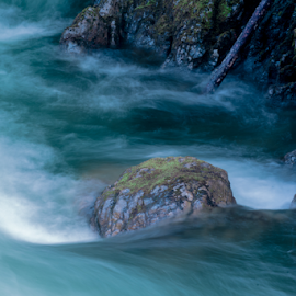 Flowing to the Sea by Keith Sutherland - Nature Up Close Water ( water, flowing, green, river )