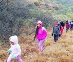 New Years 7kms Hike : Kloofendal Nature Reserve