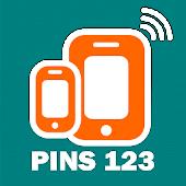 Pins 123