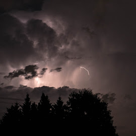 Storm Coming by Thomas Shaw - Landscapes Cloud Formations ( nightshots, clouds, skyline, lightning, sky, clayton, trees, night, storm, rain, nightscape, north carolina )