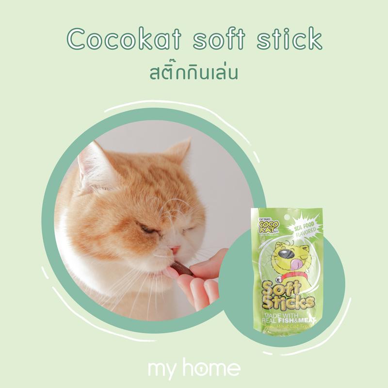 ขนมแมว ขนมแมวยอดฮิต ขนมแมวยี่ห้อไหนดี