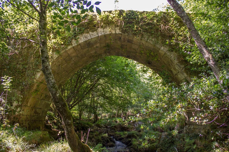 Puente de Portafurada