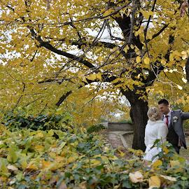 by Sasa Rajic Wedding Photography - Wedding Bride & Groom ( wedding photography, weddings, wedding, wedding rings, wedding photographer )