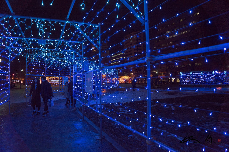 光のエキシビジョントンネル