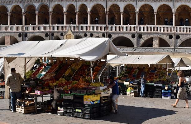 i colori di frutta e verdura di renzo brazzolotto