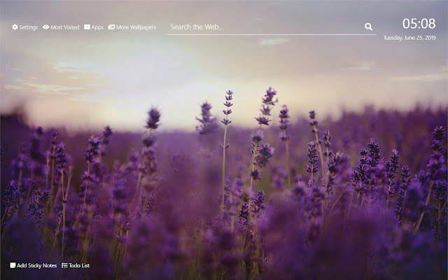 Lavender Flower Wallpaper HD New Tab Theme©