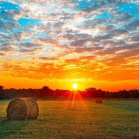 It's been cloudy or raining for the past few days but the sun is going to return. Greer SC! by Charles Hardin - Landscapes Sunsets & Sunrises