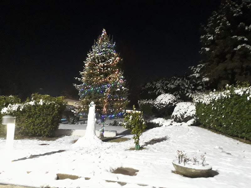I colori del Natale di TT