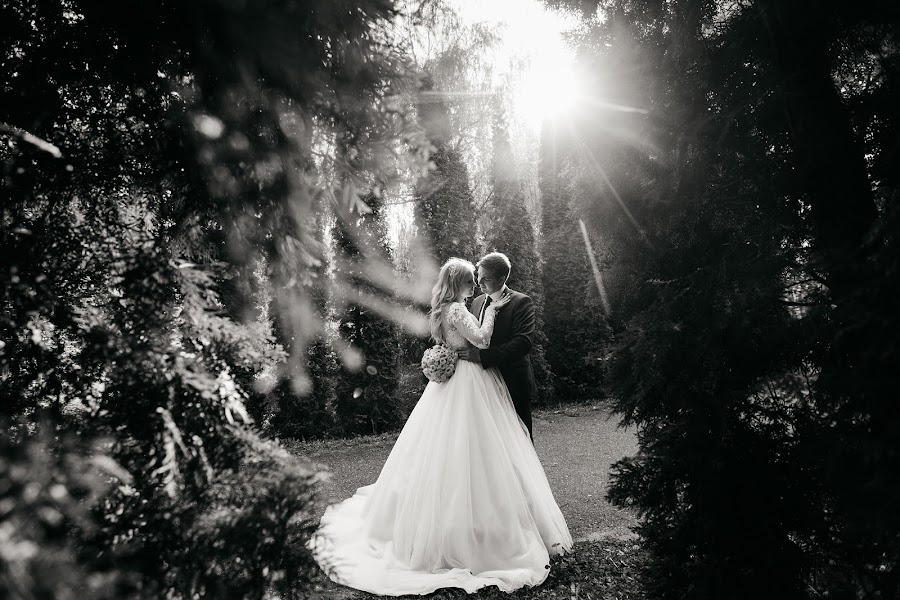Wedding photographer Vladislav Malinkin (Malinkin). Photo of 04.02.2019