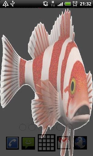 Shiny Fish Live Wallpaper