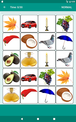 Brain game. Picture Match. 2.3.5 screenshots 14