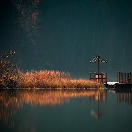Autumn Reflection by Csiszar Barna - Landscapes Waterscapes ( reflection, waterscape, dark, autumn, water )