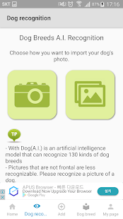 With Dog - Photo sharing SNS app for dogs(AI) - náhled