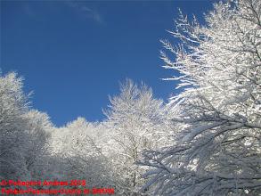 Photo: IMG_9921 sul 615 bianco e azzurro
