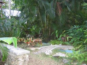 Photo: Yoga Retreat, Bahamas - bench by pond