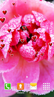 Winter Flowers Live Wallpapers - náhled