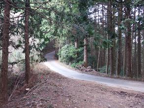 ふっこし峠は林道合流点