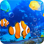 Aquarium Clown Fish Live Wallpaper 2018