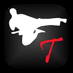 Taekwondo Training 1.00