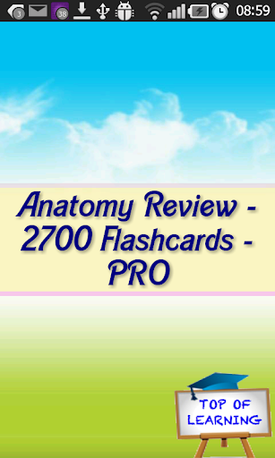 Anatomy Comprehensive Review L
