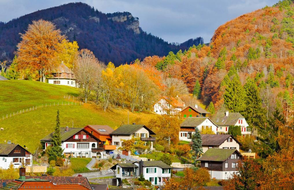 Lucerne được bao phủ bởi một màu vàng dịu dàng