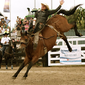 by Bryan Lowcay - Sports & Fitness Rodeo/Bull Riding (  )