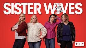Sister Wives thumbnail