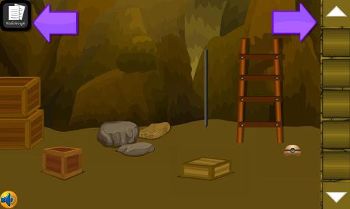 Adventure Joy Game Cave Escape